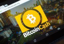 NulLTX Bitcoin Cash Price Drop