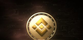 NullTX Binance Coin price 17