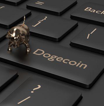 NullTX Dogecoin price Rise