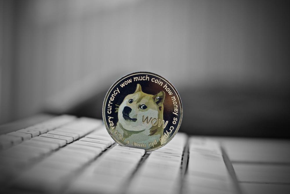 Dogecoin Worth