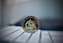 NullTX Dogecoin Price Bounce