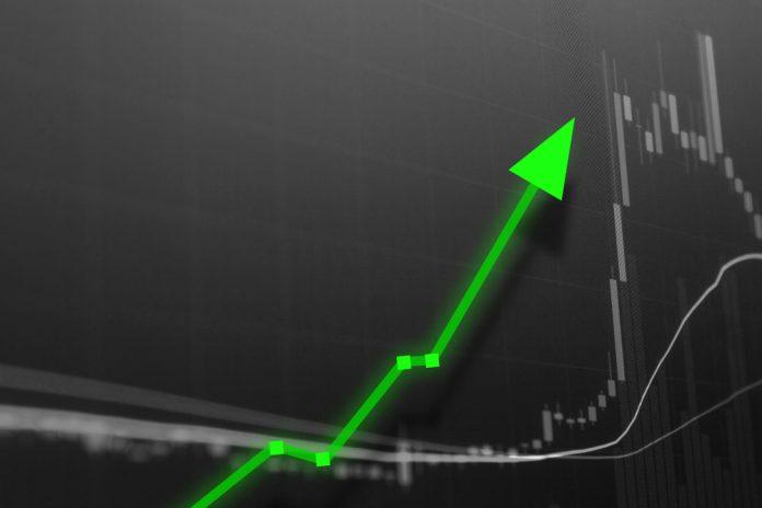 NullTX Crypto Gains 365