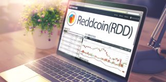 NullTX Reddcoin Price Surge