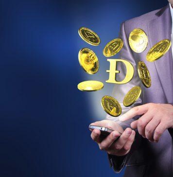 NullTX Dogecoin Price Bullrun 3