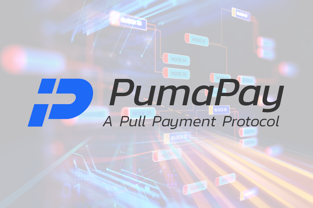 3 Aspect Setting PumaPay Apart From Other Payment Processing Protocols