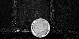 NulLTX Dogecoin Price Stable