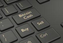 NullTX Bitcoin Cash Price
