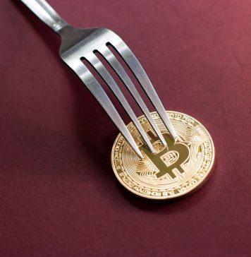bch fork