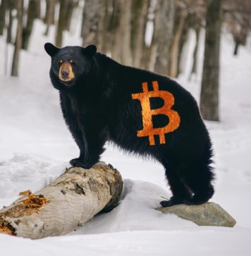 NullTX Bitcoin Price Bear