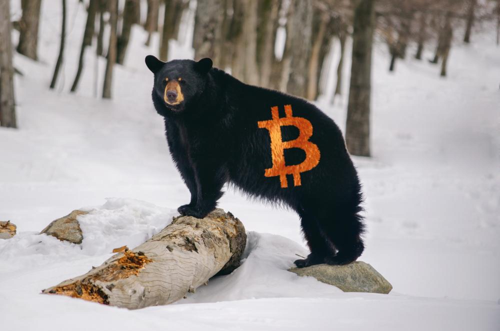 NullTX Bitcoin Price Bear