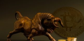 NullTX Bitcoin Cash price Bullish