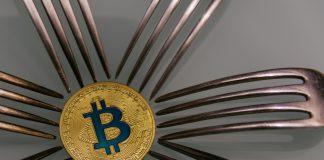 NulLTX Bitcoin SV Price