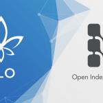 flo blockchain