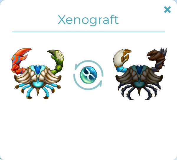 xenograft