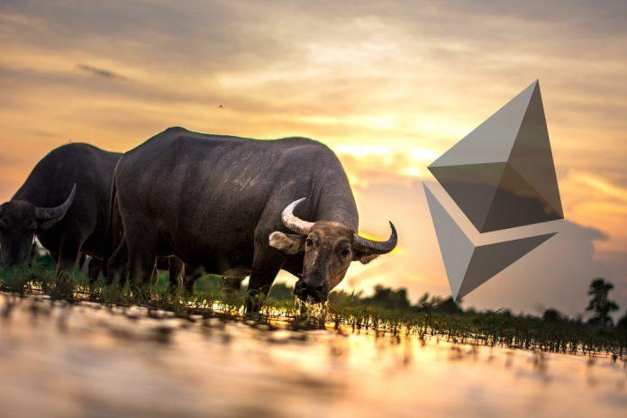 ethereum bulls featured