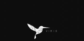 virieproject.com