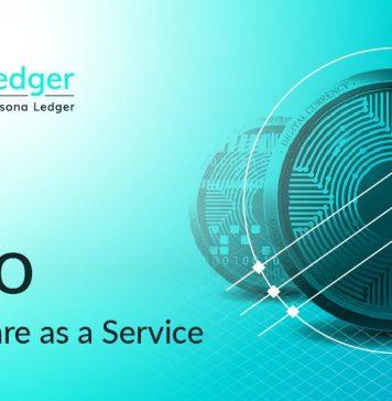 NullTX eDEV VPLedger