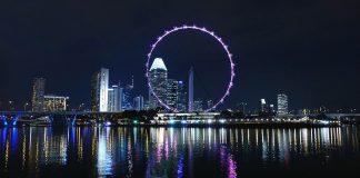 NullTX Zoom Singapore