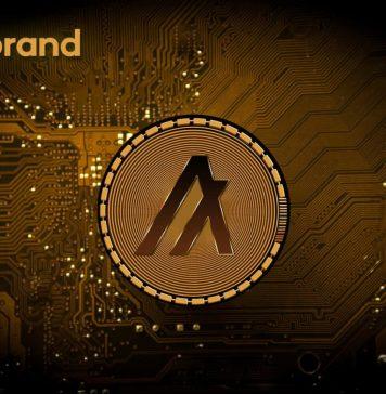 NullTX Algorand Developments
