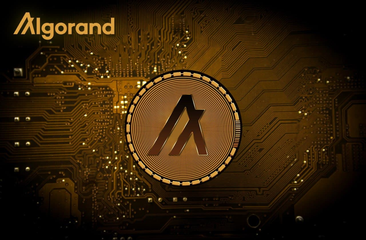 Overviewing the Algorand Hype - Price Analysis & Recent Developments » NullTX